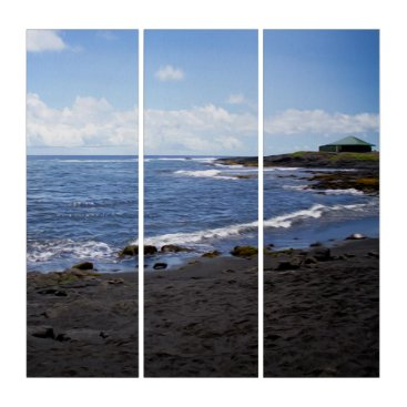 Beach Themed Punalu'u Black Sand Beach Hawaii Triptych