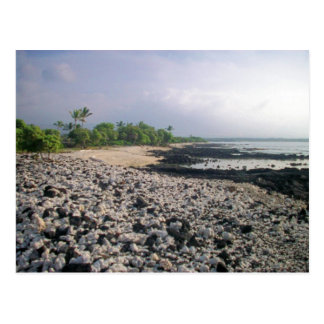 Punalu'u Black Sand Beach Postcard