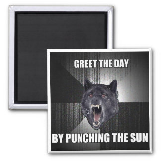 Punch The Sun 2 Inch Square Magnet