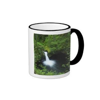 Punchbowl cae en Eagle Creek, el río Columbia Taza De Café