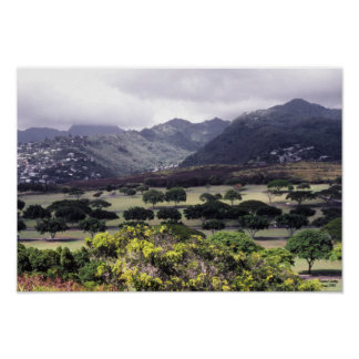 Punchbowl Cemetery Hawaii Poster