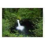 Punchbowl Falls on Eagle Creek, Columbia River Greeting Card