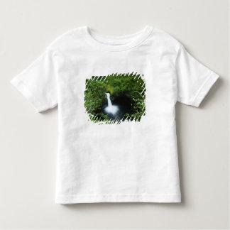 Punchbowl Falls on Eagle Creek, Columbia River Toddler T-shirt