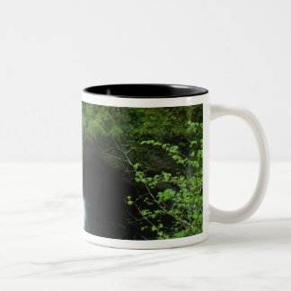 Punchbowl Falls on Eagle Creek, Columbia River Two-Tone Coffee Mug