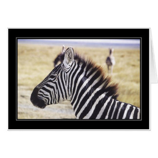 Punda Milia (Zebra) Profile Greeting Card