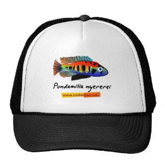 Pundamilia nyererei trucker hat