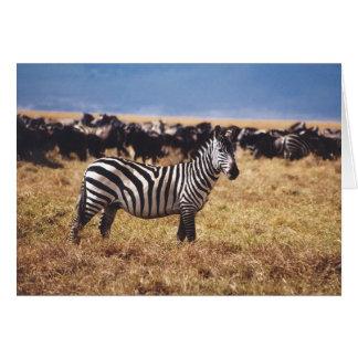 Pundamilia (Zebra) Greeting Card