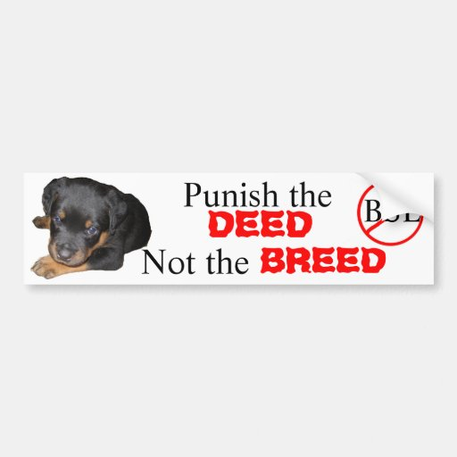 Punish the DEED, not the BREED Car Bumper Sticker