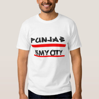 Punjab Is My City White Teee Men's T Shirt