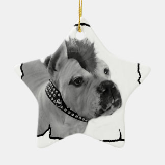 Punk Boxer dog star ornament