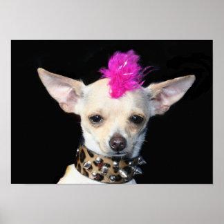 Punk Chihuahua Poster