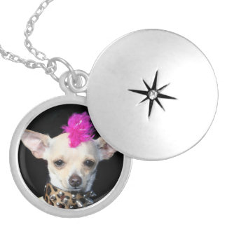Punk Chihuahua Sterling Silver-Plate locket
