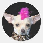Punk de la chihuahua etiqueta redonda