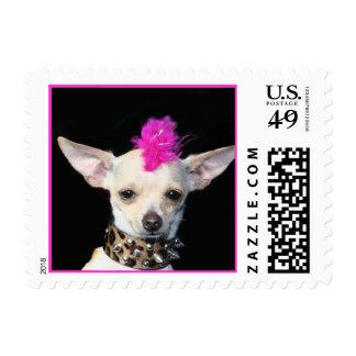 Punk Rock Chihuahua Stamp