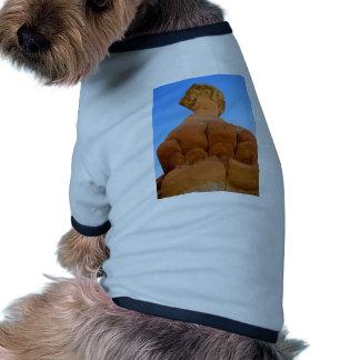 Puño de dioses ropa de perro