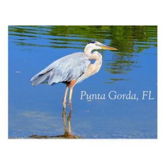 Punta Gorda, FL Postcard