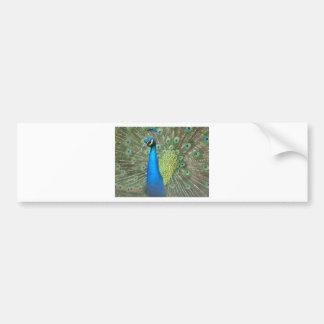 Puntal 2 del pavo real pegatina de parachoque