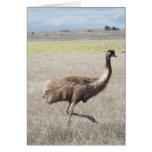 puntal del emu tarjeton