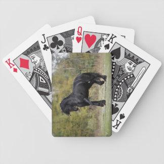 Puntal del semental cartas de juego