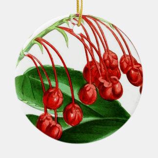 Puntilla de bayas rojas, impresión del vintage adorno navideño redondo de cerámica