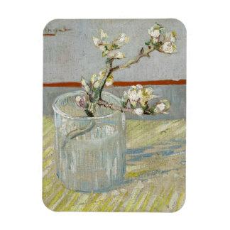 Puntilla de la almendra floreciente en un vidrio iman flexible