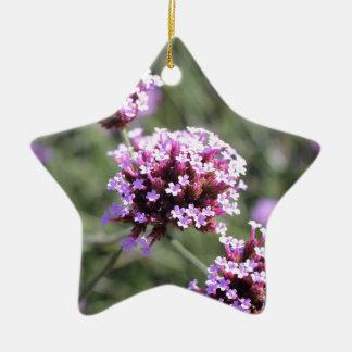 Puntilla de la flor de la verbena de la lila adorno navideño de cerámica en forma de estrella