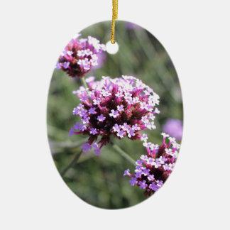 Puntilla de la flor de la verbena de la lila adorno navideño ovalado de cerámica