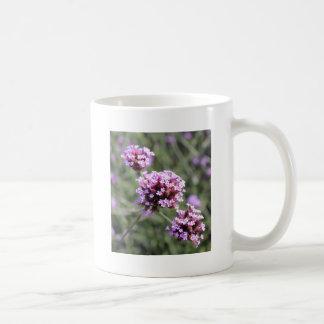 Puntilla de la flor de la verbena de la lila taza