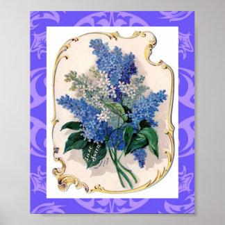 Puntilla de la impresión de las lilas póster