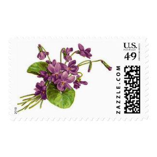 Puntilla de violetas - franqueo