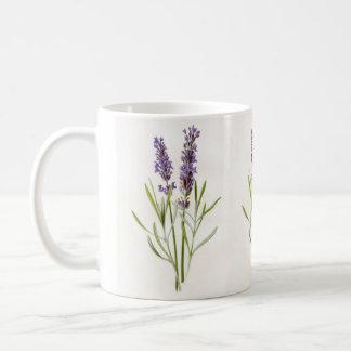 Puntillas botánicas de la planta de la hierba de taza clásica