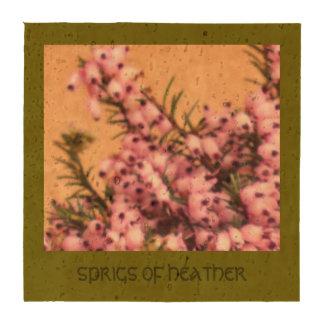 Puntillas de las esteras del corcho del brezo posavasos