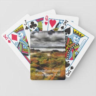 Punto 16 de la plantación barajas de cartas