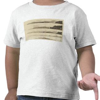 Punto arqueado la tierra de Kerguelen Camiseta