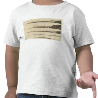 Punto arqueado, la tierra de Kerguelen Camiseta