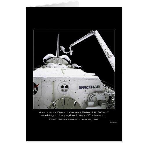 Punto bajo y Wisoff de los astronautas que trabaja Tarjeta De Felicitación