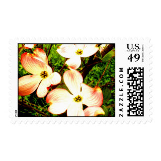 Punto culminante timbres postales