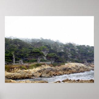 Punto de Chipre en la península de Monterey Póster