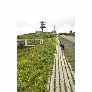 Punto de la arena, paseo marítimo de Alaska Fotoescultura Vertical