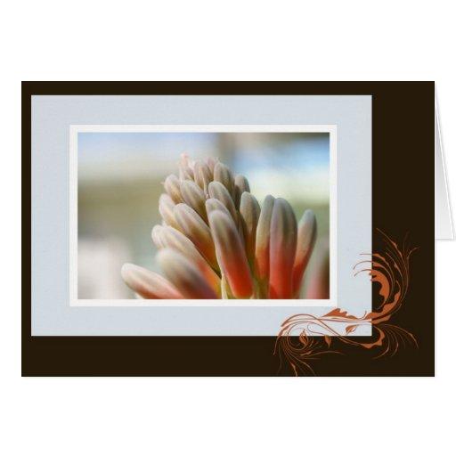 Punto de la flor del áloe tarjeta de felicitación