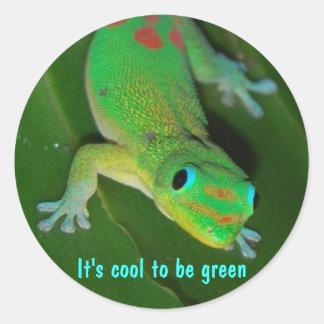 Punto de vista del Gecko - es fresco ser verde Pegatina Redonda