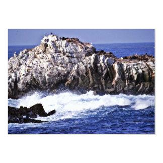 """Punto del león marino - pinta. Reserva del estado Invitación 5"""" X 7"""""""