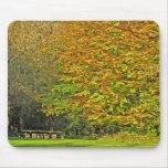 punto del picknick del otoño tapete de ratones