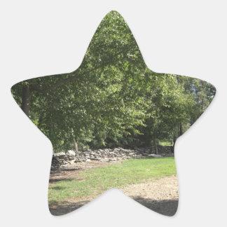Punto del pináculo pegatina en forma de estrella