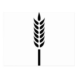 punto del trigo del cereal postales