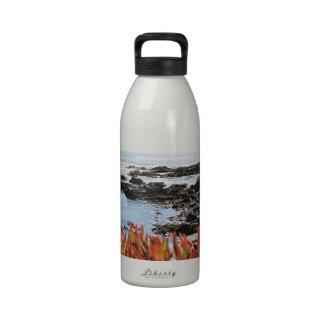 Punto Piedras Blancas Botella De Agua