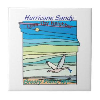 Punto ventoso NY del alivio de Sandy del huracán Teja Ceramica