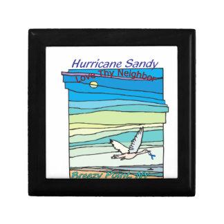 Punto ventoso NY del alivio de Sandy del huracán Cajas De Joyas