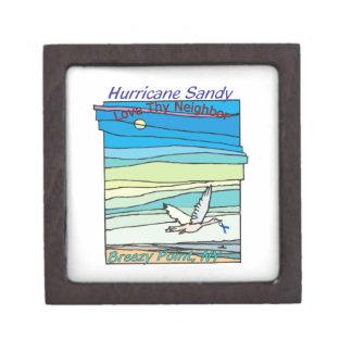 Punto ventoso NY del alivio de Sandy del huracán Cajas De Regalo De Calidad
