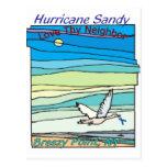Punto ventoso NY del alivio de Sandy del huracán Tarjetas Postales